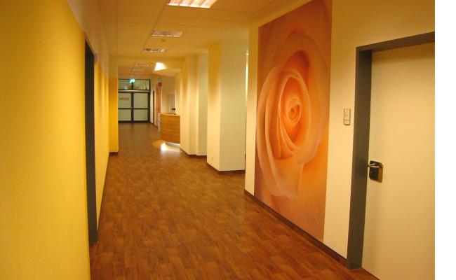 Entbindungsstation St. Walburga Meschede 8